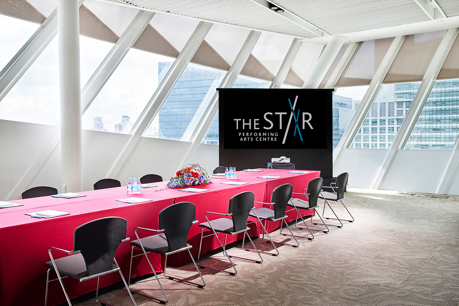 The-Star-Loft-Meeting-1-v2